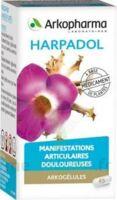 ARKOGELULES HARPAGOPHYTON, 150 gélules à Béziers