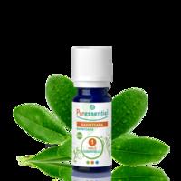 Puressentiel Huiles essentielles - HEBBD Ravintsara BIO* - 5 ml à Béziers