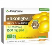 Arkoroyal Gelée royale bio 1500 mg Solution buvable 20 Ampoules/10ml à Béziers
